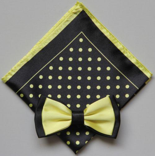 Polka Dot Bow Tie -Hanky 13393 pdbt13393